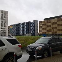 krestovskiy-parket_rabochee_foto_22